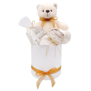Caja regalo nacimiento oso peluche