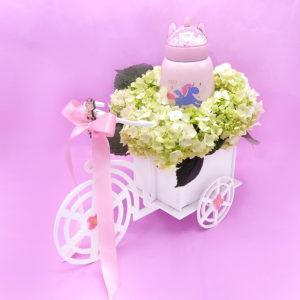 detalles de bebe bicicleta niña